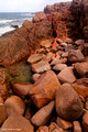 Rocky Shores of Boat Harbour, Near Nelson Bay, NSW, Australia