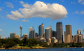 Royal Botanic Gardens Sydney and City Skyline, NSW Australia