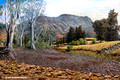 Wilpena Pound Panorama Theatre - Hawker, South Australia