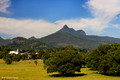 Looking to Wollumbin (Mt Warning) from South Murwillumbah