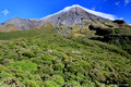 Taranaki (Mt Egmont)-From East Egmont National Park