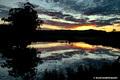 Myall River Sunset-25th July 2007