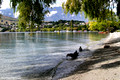 Queenstown Bay, Lake Wakatipu, Queenstown, New Zealand