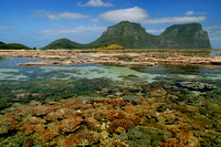 CORAL and LAGOON Lord Howe Island