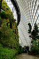 Cloud Forest Dome, Gardens By The Bay, Singapore