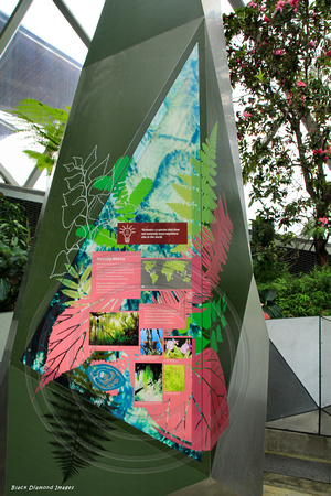 BLACK DIAMOND IMAGES * | Cloud Forest Dome, Gardens By The Bay