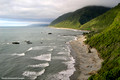 Beach Landscape and Temperate Rainforest Greymouth to Punakaiki, West Coast South Island, New Zealand